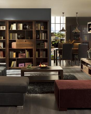 Salón con zona librería zona tv y zona comedor